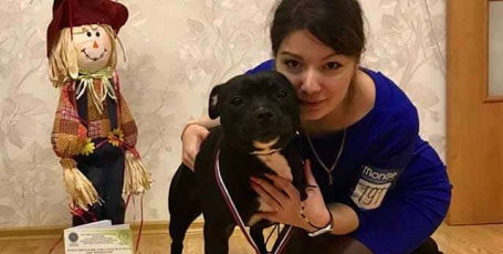 25.02.2018 Архангельск, всепородная выставка собак
